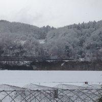 雪景色(晴れ)